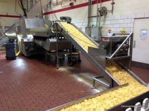 Fresh Martin's Potato Chips move along the conveyer belt getting salted and cooled at the Martin's Potato Chip Factory Tour.