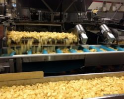 York's Presidential Chip: The Martin's Potato Chip Factory Tour