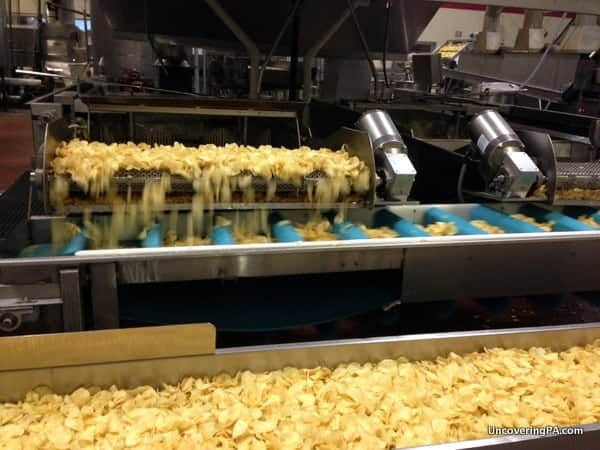 Fresh chips come out of the fryer on the Martin's Potato Chip Factory Tour.