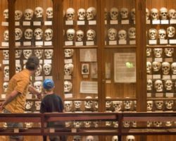 Visiting the Mütter Museum: Philly's Most Macabre Museum