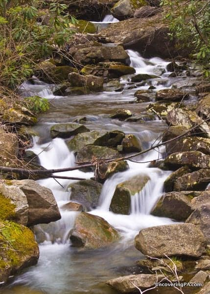 A series of cascades on Paige Run above Table Falls in the Quehanna Wild Area.