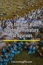 Feline Dioramas and Civil War History at Civil War Tails in Gettysburg
