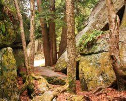 Visiting Bilger's Rocks: Pennsylvania's Best Rock Outcropping