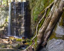 Pennsylvania Waterfalls: How to Get to Hector Falls