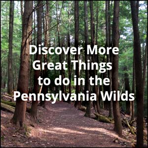 Things to do in the Lehigh Valley