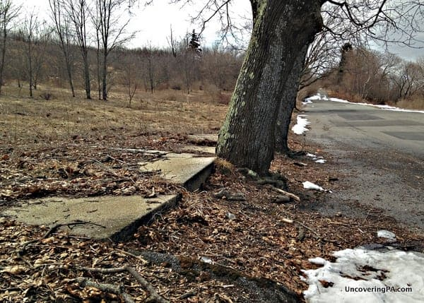 Buckled sidewalk in the PA ghost town of Centralia.