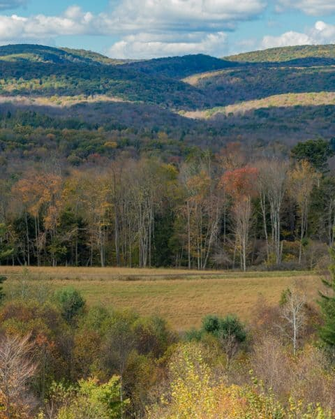 The beauty of Elk County, Pennsylvania
