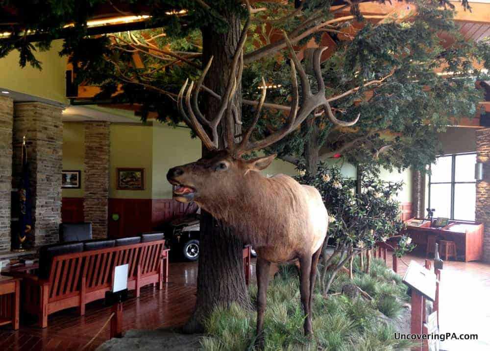 Inside the Elk Country Visitor Center
