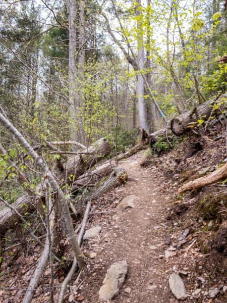 Mason-Dixon Trail near Holtwood PA