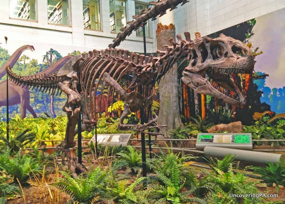 Visiting the Carnegie Museum of Natural History in Pittsburgh, Pennsylvania.