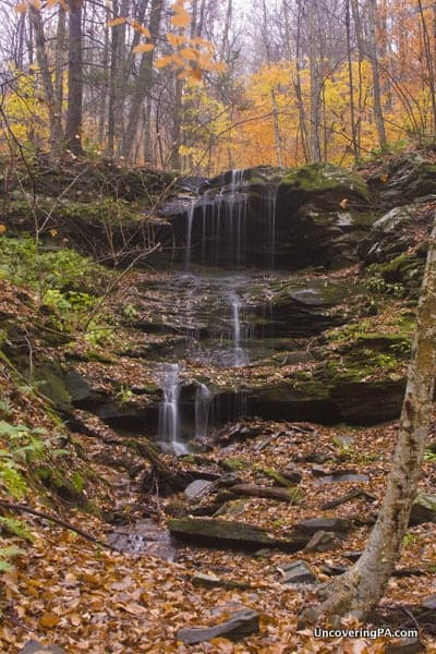Waterfall in State Game Lands 66, Sullivan County, Pennsylvania.