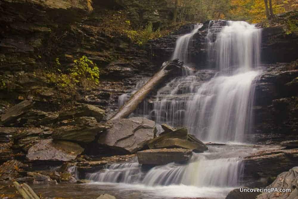 Shawnee Falls - Ricketts Glen Falls Trail