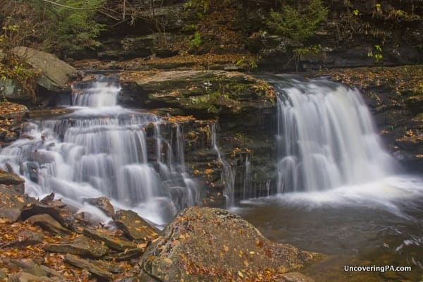 Cayuga Falls in Ricketts Glen State Park.