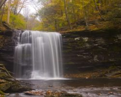 Waterfall Paradise: Tips for Hiking the Falls Trail in Ricketts Glen State Park