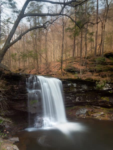 Harrison Wright Falls at Ricketts Glen State Park in Benton PA