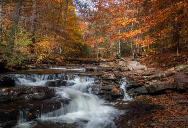 Kitchen Creek at Ricketts Glen State Park in the fall