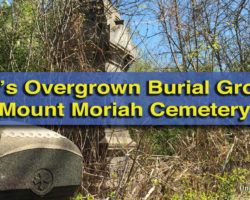 Exploring Philadelphia's Overgrown Burial Grounds: Mount Moriah Cemetery