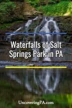 Salt Springs State Park Waterfalls