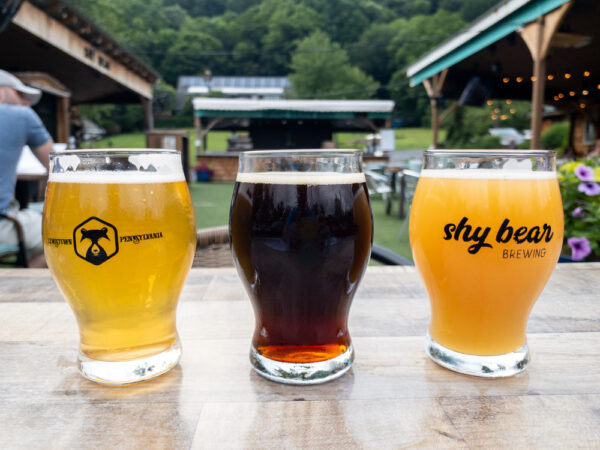 A flight of beers at Shy Bear Brewing in Lewistown, PA