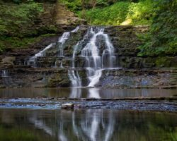 How to Get to the Waterfalls at Salt Springs State Park