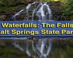 Pennsylvania Waterfalls: The Falls of Salt Springs State Park