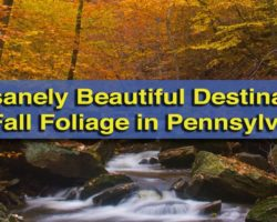 10 Insanely Beautiful Destinations for Fall Foliage in Pennsylvania