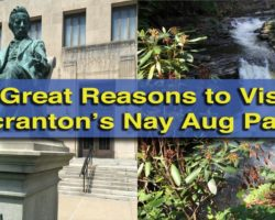 5 Great Reasons to Visit Scranton's Nay Aug Park