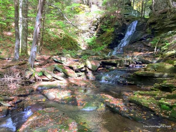 Downstream of East Branch Falls Hillsgrove Pennsylvania
