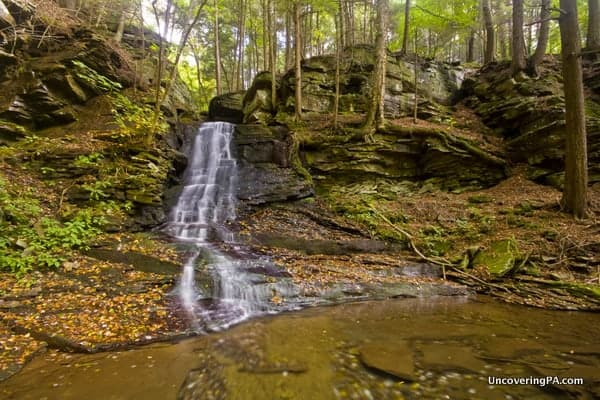 East Branch Falls in Loyalsock State Forest of PA