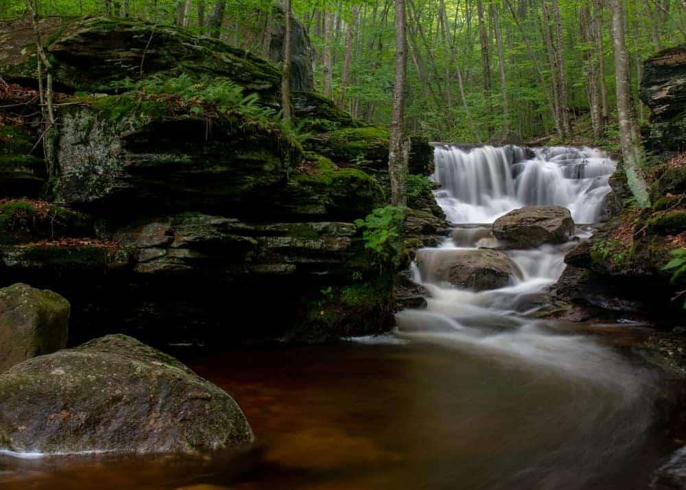 Hiking Miners Runs in Loyalsock State Forest