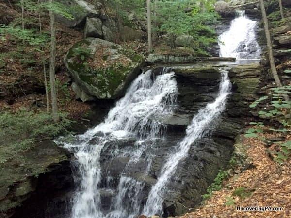 Miners Run Waterfalls McIntyre Wild Area PA