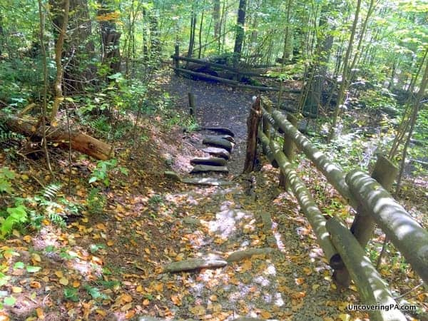 Trail to Raymondskill Falls Delaware Water Gap PA