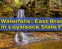 Pennsylvania Waterfalls: How to Get to East Branch Falls in the Loyalsock State Forest