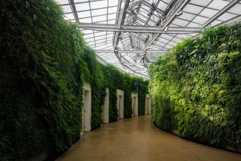 Conservatory At Longwood Gardens Near Philadelphia Pennsylvania