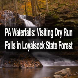 Visiting Dry Run Falls in Loyalsock State Forest