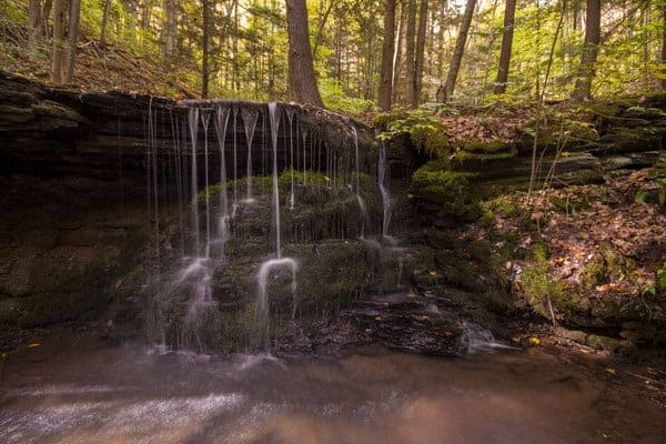 Bear Run Waterfalls, Colton Point State Park near Wellsboro, Pennsylvania