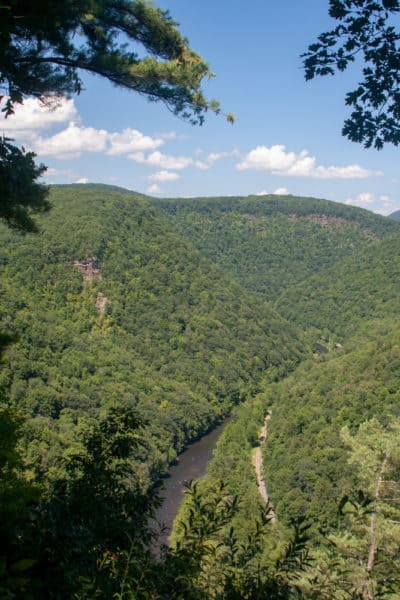 PA Grand Canyon from Colton Point State Park