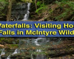 Pennsylvania Waterfalls: How to Get to Hounds Run Falls in the McIntyre Wild Area