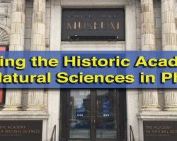 Visiting the Fascinating and Historic Academy of Natural Sciences in Philadelphia