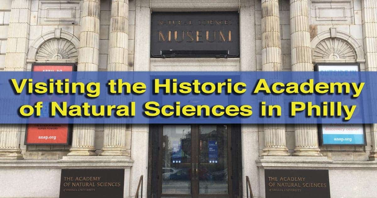Visiting the Academy of Natural Sciences Philadelphia