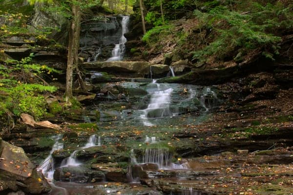 Hounds Run Falls in northern Lycoming County, PA