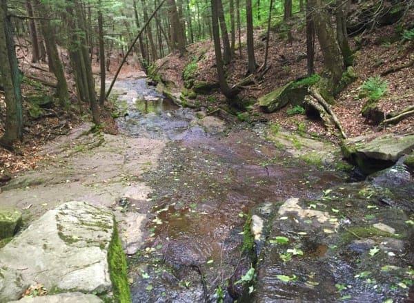 Creek in Prompton State Park in Pennsylvania.