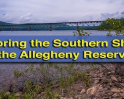 Exploring the Blue Waters and Forested Hillsides along the Southern Shores of the Allegheny Reservoir