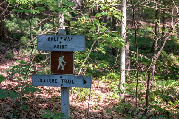 Trail marker at the Hoverter and Sholl Box Huckleberry Natural Area in Perry County PA