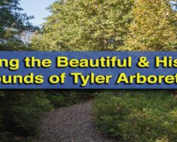 Visiting the Beautiful and Historic Grounds of the Tyler Arboretum