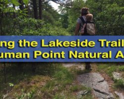 Hiking the Scenic Lakeside Trails of the Shuman Point Natural Area