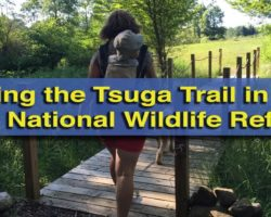 Hiking the Tsuga Trail in the Erie National Wildlife Refuge
