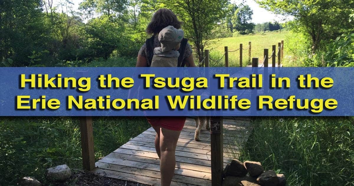 Tsuga Trail - Hiking in the Erie National Wildlife Refuge near Meadville, Pennsylvania