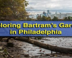 Exploring Philadelphia's Bartram's Garden: North America's Oldest Botanical Garden