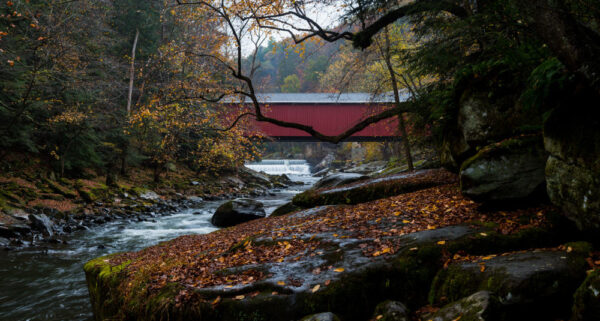 Things to do in McConnells Mill State Park: See the covered bridge